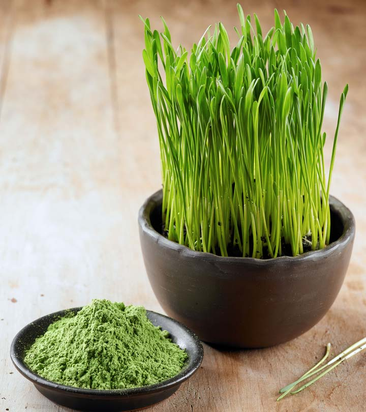 how to use wheatgrass powder