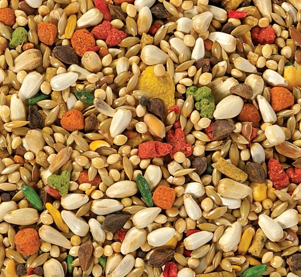 Seeds Mixture
